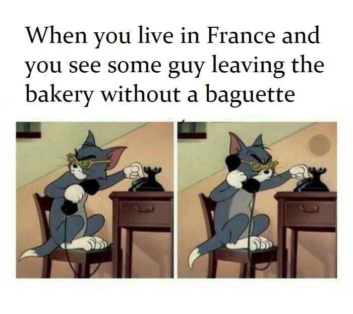 La France pour les nuls.