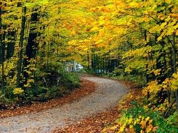 Fall. Would love to go for a run on this trail!