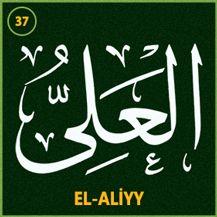 37_el_aliyy