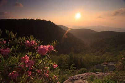 Spring & Summer in Asheville, NC #appalachian #travel #USA
