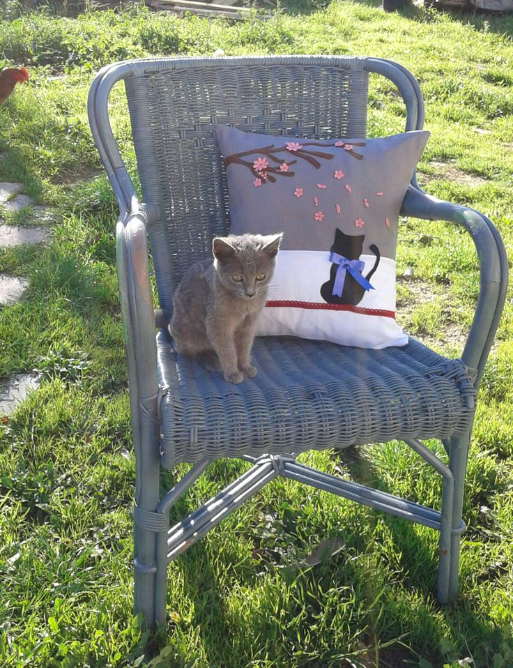 cuscino decorativo con gatto e fiori 40x40,applicazioni 3d,per divano, camera da letto, sedia, fatto a mano, arredamento, decorazioni feltro di CreazioniDiCinziaO su Etsy