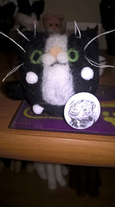 Felicity and the gang were really chuffed to get a badge from their friend Nettle over at Drifting Black Felicity reckons that she could be  a star just like Nettle is but she hasn't got a book out yet...so it might take some time!!