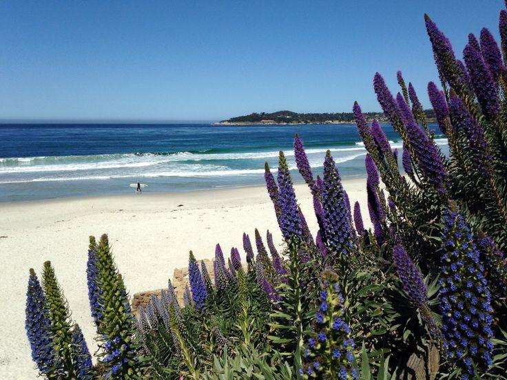 Carmel Beach California with an iphone [OC] [3264x2448]   landscape Nature Photos