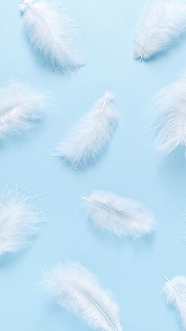 Downloaded From Girly Wallpapers Http Itunes Apple Com App Id1108375300 Thousands Of Hd Girly W Baby Blue Wallpaper Blue Wallpaper Iphone Feather Wallpaper