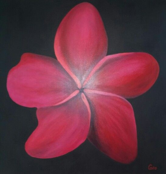 My Red Franjipani by Caro