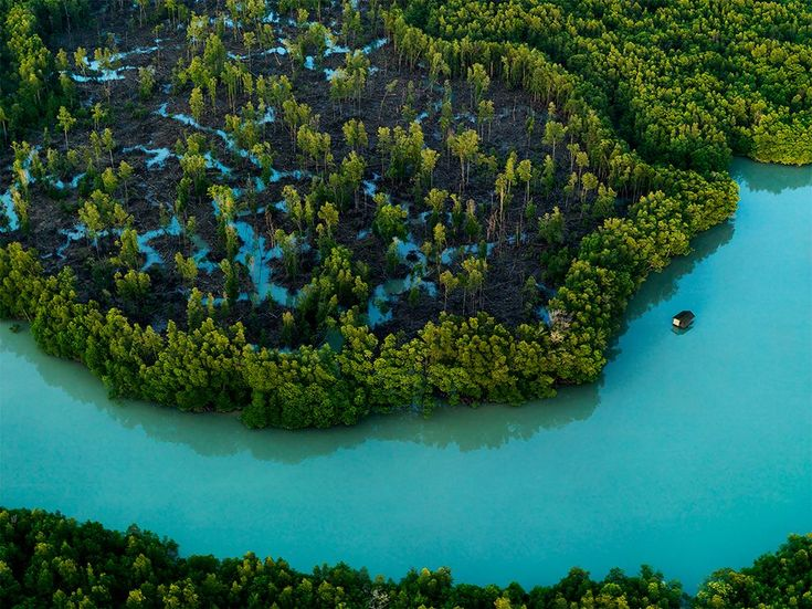 Johor, Malaysia Photograph by Justin Guariglia  Mangroves fringe the tip of Peninsular Malaysia, in Johor, the southernmost reach of mainland Asia. Separated from its globalized island neighbor by a mere half-mile causeway, Johor is the second largest and most varied of the 11 states that make up Peninsular Malaysia, a crossroads realm crammed with both ecological and ethnic diversity.