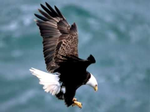 Uploaded on Mar 21, 2009     This is Third Day's song Eagles with Lyrics, taken from their Wherever you are album