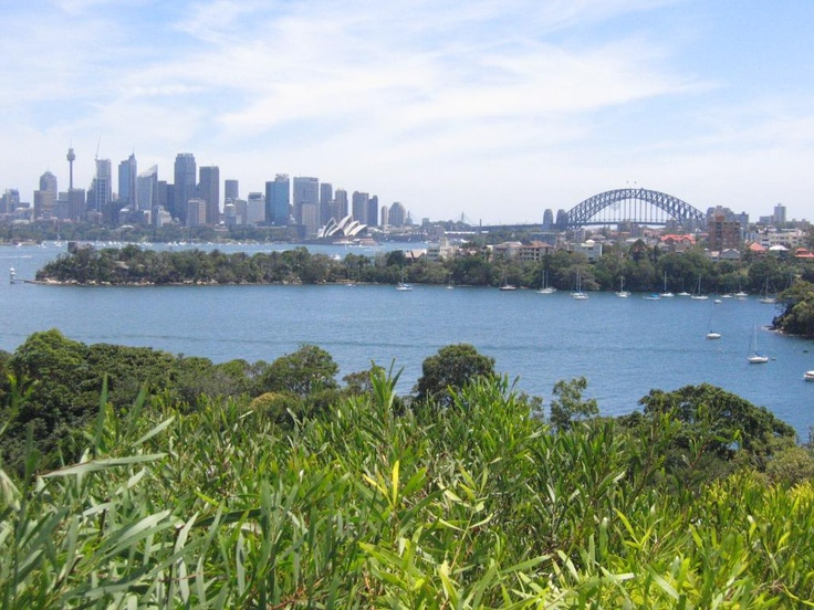 this is the view from the giraffe's enclosure at the Taronga Zoo in Sydney