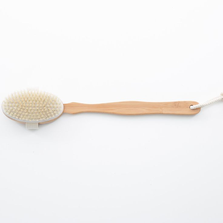 Ryggborste Vildsvins Borst, Bamboo, Sufraco