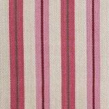 Brolli Stripe Pink