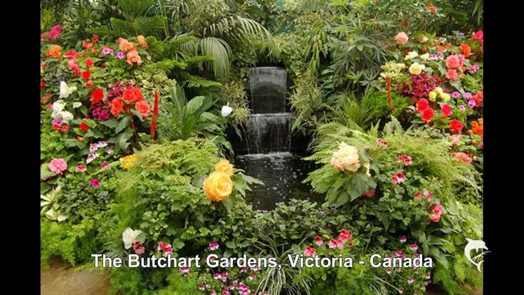 If you like flowers as much as I do,  Enjoy! The most beautiful gardens in the world.