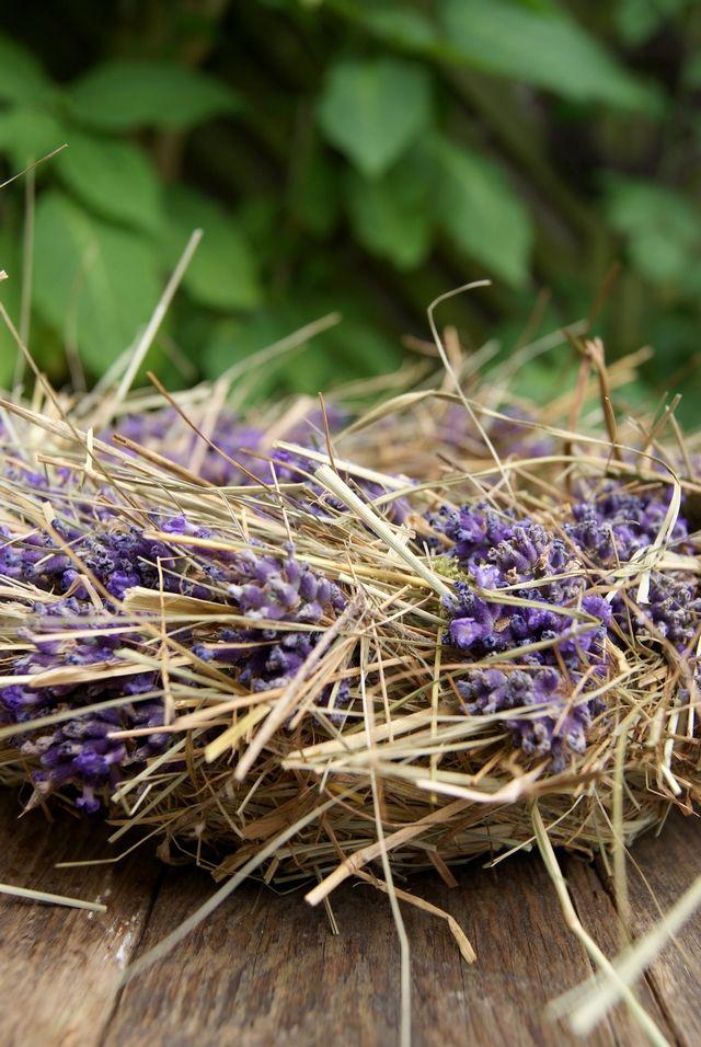 Im Juli ist Lavendelzeit. Und weil der Lavendel im Vorgarten schon am Verblühen ist, habe ich schnell noch ein paar Stängel geerntet, um ...