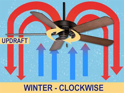 Ceiling Fan Direction for Summer & Winter