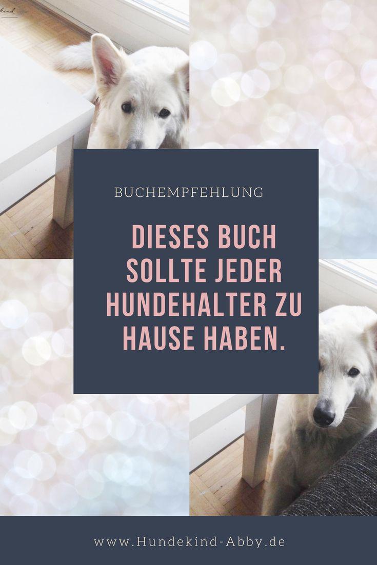 #Hund #Hundeblogger #Hundeliebe #Wissen #Lifehacks   Hunde    Erziehung    DIY    Wissen    Gesundheit