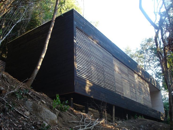 Corteza, pulpa y raíces, la casa Q parece un árbol más. Sumergida en un inmenso bosque nativo camino a La Puntilla en Chile, la obra del arquitecto Sebastián Undurraga habla sobre un modo de entender la arquitectura: un oficio.