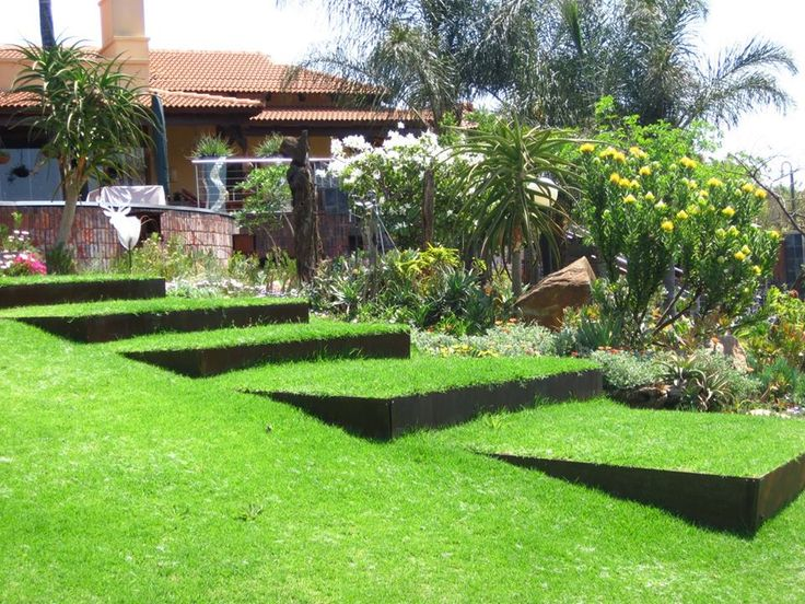New over-sized, rusted steel steps, build into the slope of the lawn,Running in front of the Fynbos garden.