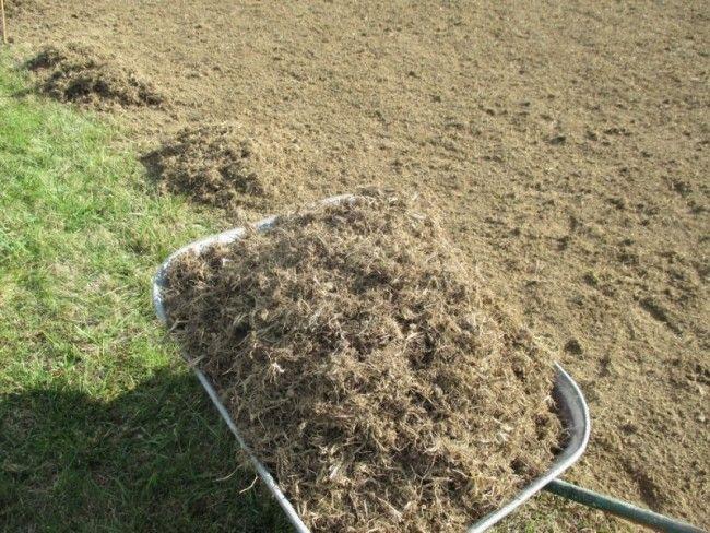 Les 25 meilleures id es de la cat gorie semer pelouse sur pinterest semer une pelouse semer - Semer a la volee ...