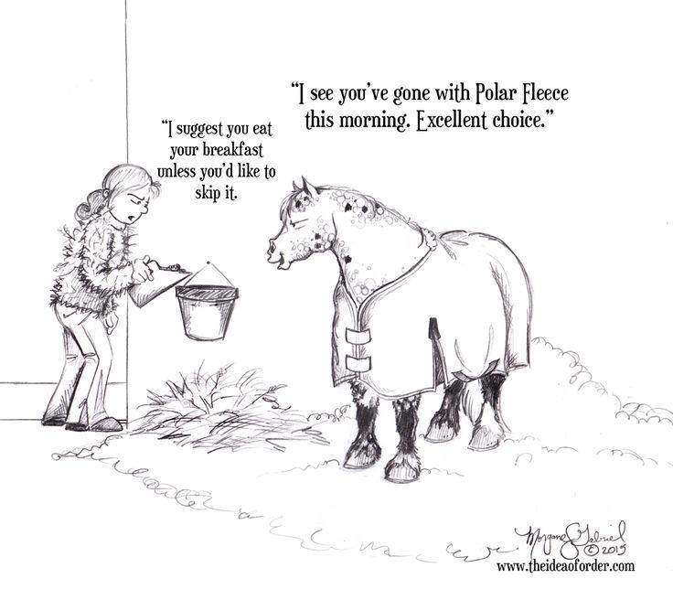 Equine essay topic ideas?