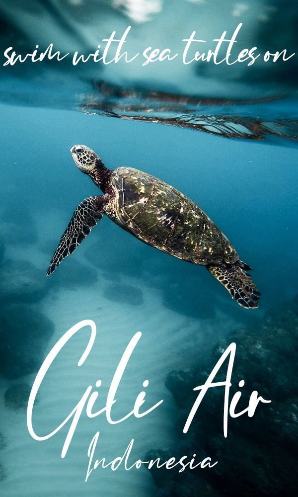 Gili Air Travel Guide – Indonesia's Perfect Chill-Out Spot