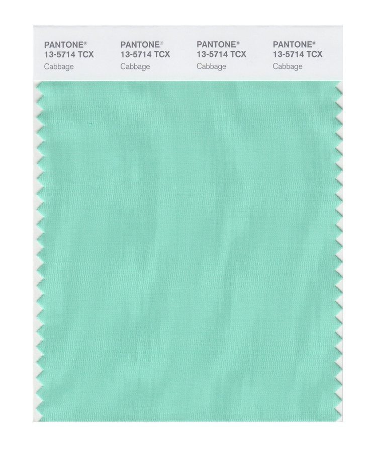 PANTONE 13-5714 Cabbage - Google Search | mint green ...