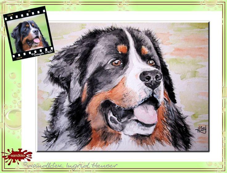 Hundeportrait nach Fotovorlage/ dog's portrait drawn/painted from photograph;  © Wandklex Ingrid Heuser künstlerische Wandbemalung, Ratzeburg/Germany - ein Designerstück von wandklex bei DaWanda, - in meinem kleinen Klexshop http://de.dawanda.com/shop/wandklex können Sie Ihr persönliches Bild nach Ihrer eigenen Fotovorlage bestellen.
