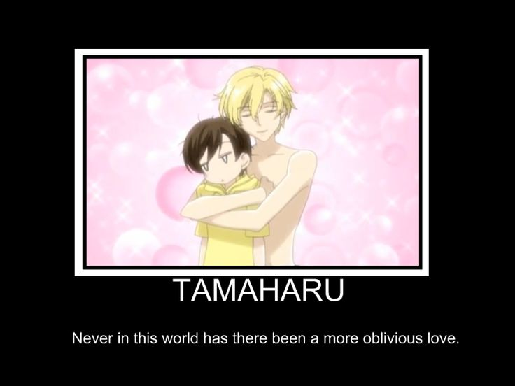 Tamaharu XD by Rainfire111.deviantart.com on @deviantART