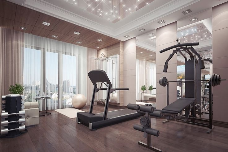 Sebastian's home gym