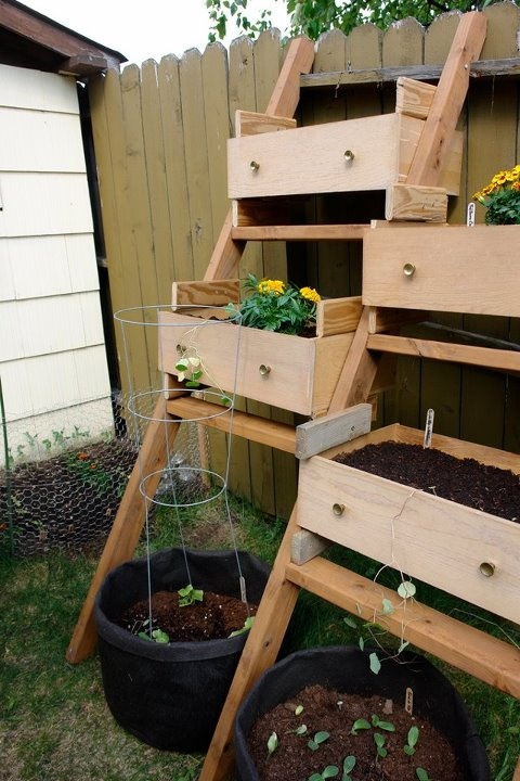 Upcycled dresser drawers for planting. instant raised flower beds. Love it!