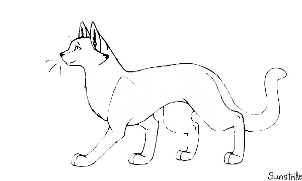 How do you draw a warrior cat warrior cat template free to everyone