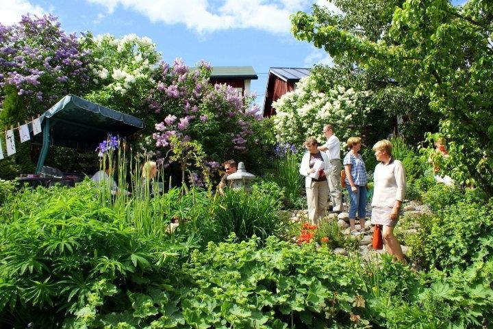 Wonderful garden in Kristinestad, Finland during Öppna Portar-Avoimet Portit.