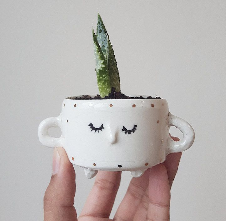 Quirky Ceramic Face Pots Are Given A Wild Hairdo When You Add A Plant