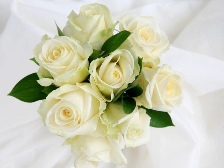 Gambar Bunga Mawar Putih Yang Telah Dirangkai