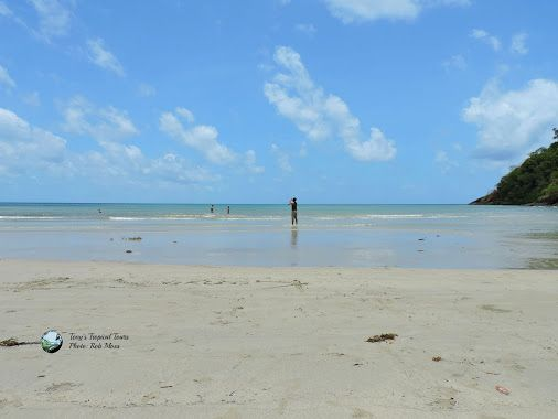 If you need a spell from winter coats, scarves, ugg boots and heaters, drop us a line, we have the perfect locations for sunshine, sunglasses, shorts and swimsuits. visit us at www.tropicaltours.com.au  #sunshine #tropics #explorequeensland #visitportdouglasdaintree #beaches #sunnydays #warmwinters