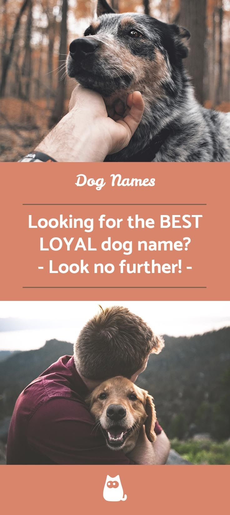 Dog Names That Mean Loyal Male And Female Dog Names Loyal Dogs Female Dog Names