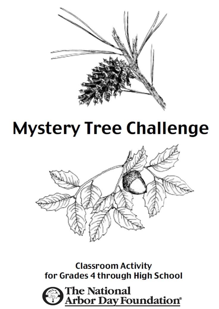 plant identification terminology games
