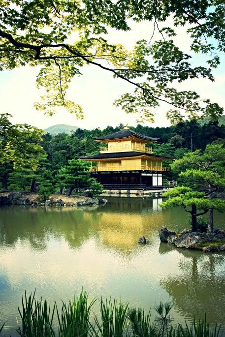 Kinkakuji | Golden Pavilion | Kyoto | Japan