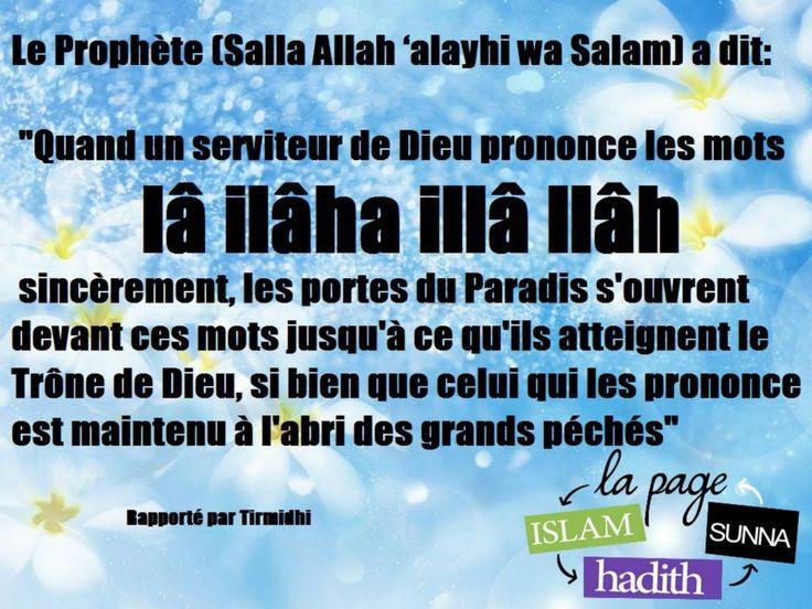 Si cette parole Lâ ilâhâ illa'llâh (nul n'est digne d'être adoré sauf Allah), est dite avec véracité et sincérité du fond du coeur, et mise en pratique conformément à ce qu'elle implique ...
