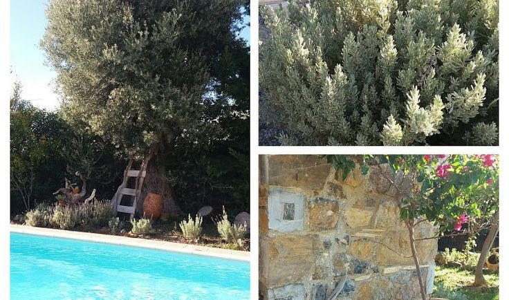 Stone cottage villa with private pool in Evia Island
