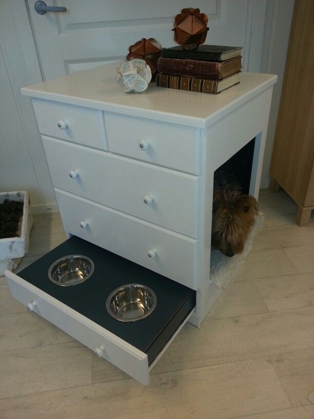 New house for my dog.