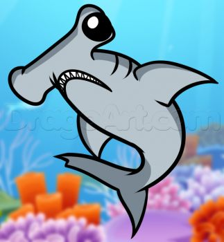 how to draw a hammerhead shark for kids