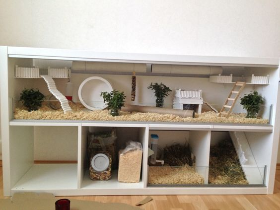 This is the most amazing hamster cage I have ever seen! I love the multiple levels and extra storage space. Cute natural elements as well!