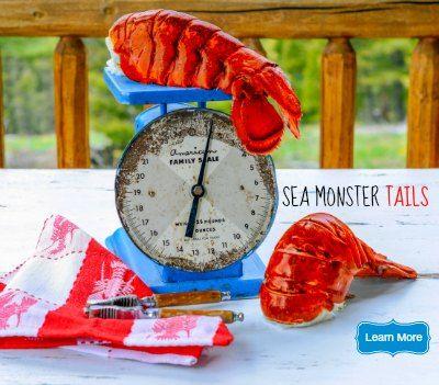 21 best maine lobster images on pinterest fresh lobster. Black Bedroom Furniture Sets. Home Design Ideas