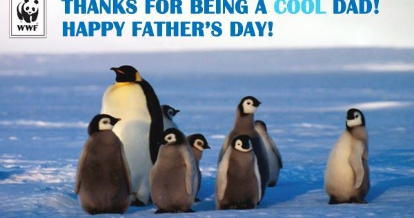 fathers day images photos  father images with quotes  happy fathers day pictures...