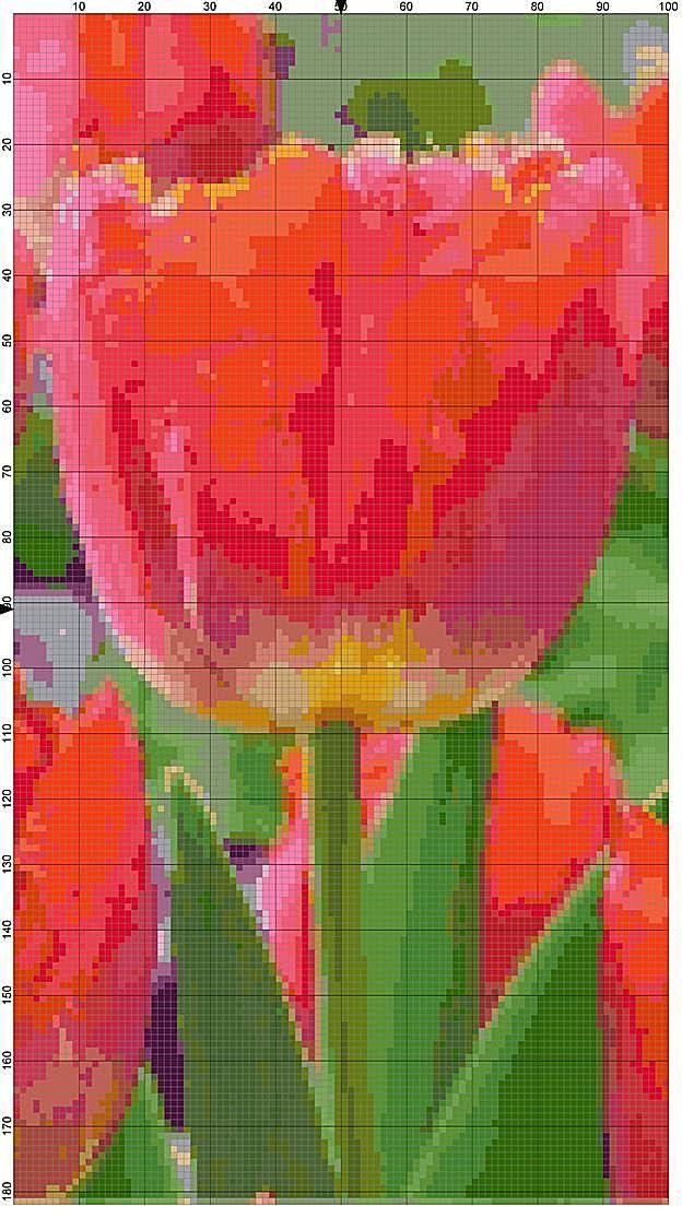 Cross Stitch Pattern Miami Sunset Tulip Pink and Orange Garden Flower Cross Stitch Design Chart PDF File Instant Download by theelegantstitchery on Etsy