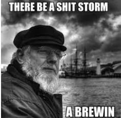 Donald Trumps Shit Storm #trumpshitstorm  Be sure to sign up for updates as we report the weather of the Great Donald Trump Shit Storm 1. sign up and nobody not even this author will see your email 2. use the hashtag #trumpshitstorm A Shit Storm is not random it is part of the methods of Divide Conquer and Rule. full series of articles coming up this week.  Add caption  Tell 10 the 3 Danger Signs of Narcissistic Personality Disorder And book Gangsters Pirates Vampires and Donald Trump…