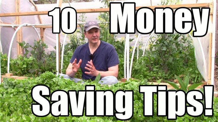 10 Money saving tips for your garden to grow veggies that produce an abundance of crops!