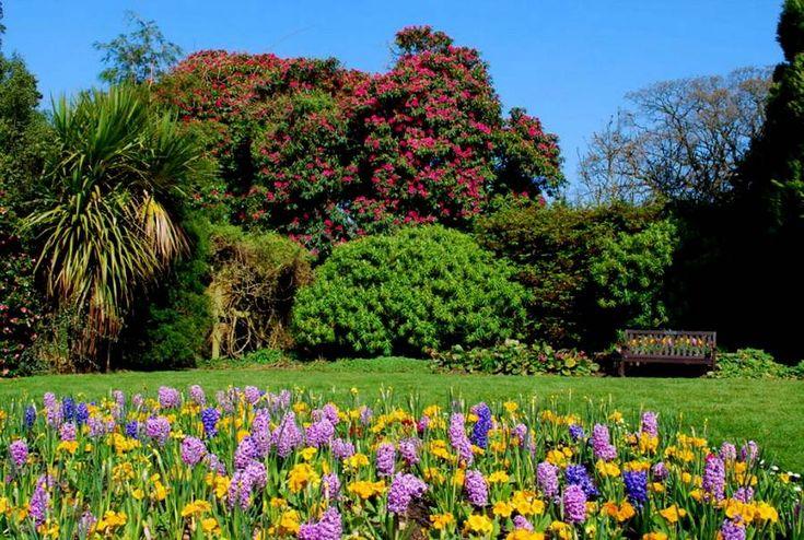 Sir Thomas and Lady Dixon Park находится около Белфаста, Северная Ирландия. Парк расположен на территории 53 квардратных километров и включает луга, лесистую местность, прибрежные области, розарии, окруженный стеной сад и японский сад.