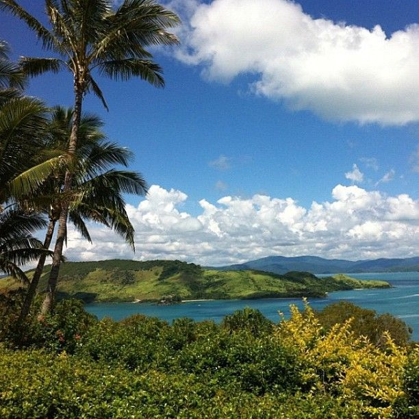 Hamilton Island: 42 Best Images About Hamilton Island On Pinterest