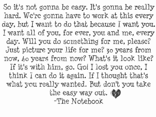 The Notebook Quotes Endearing 9 Best The Notebook Images On Pinterest  The Notebook Quotes Words