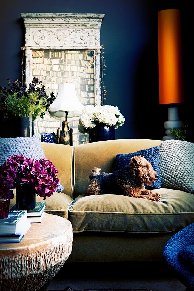 abigail ahern dark blue living room
